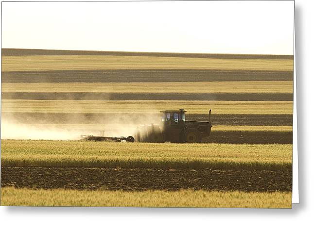 Working Farms Greeting Cards - Farmer Working Greeting Card by James BO  Insogna