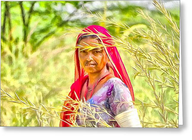 Testament Greeting Cards - Farmers Fields Harvest India Rajasthan 8b Greeting Card by Sue Jacobi