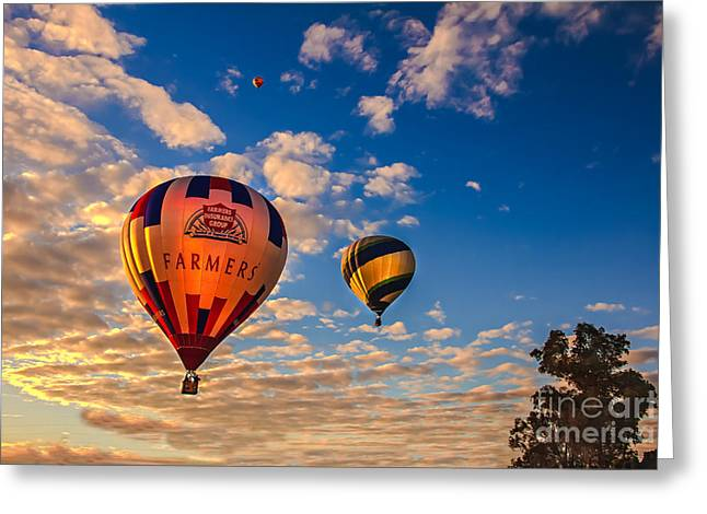 West Wetland Park Greeting Cards - Farmers Insurance Hot Air Ballon Greeting Card by Robert Bales