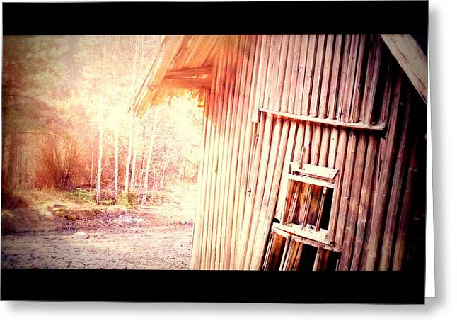 Sweating Photographs Greeting Cards - Morning At The Farm Greeting Card by Hilde Widerberg