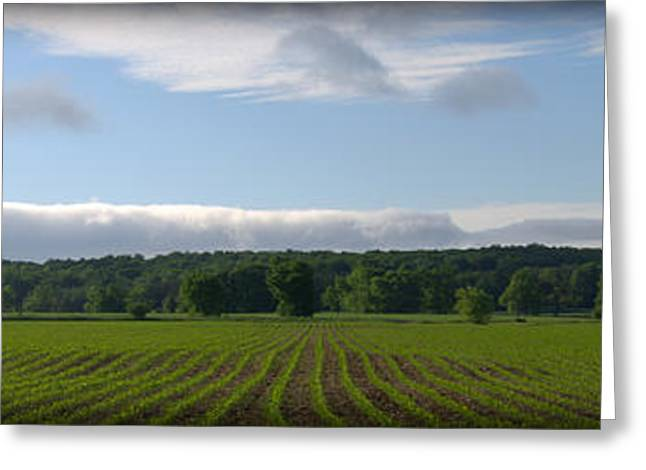 Farmers Field Greeting Cards - Farmers View Greeting Card by Rob Andrus