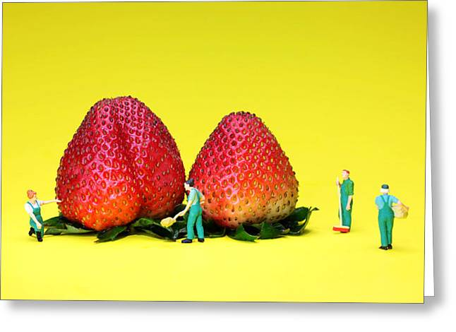 Farmers working around strawberries Greeting Card by Paul Ge