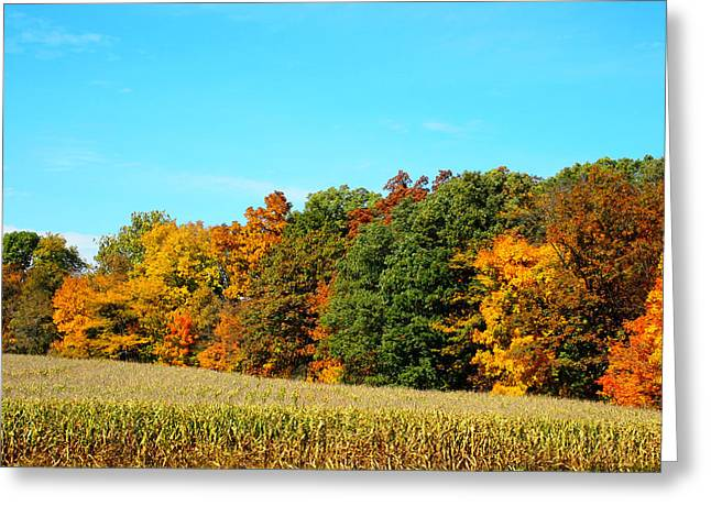 The Cornfield Greeting Cards - Farmfield Fall Greeting Card by Dan Sproul