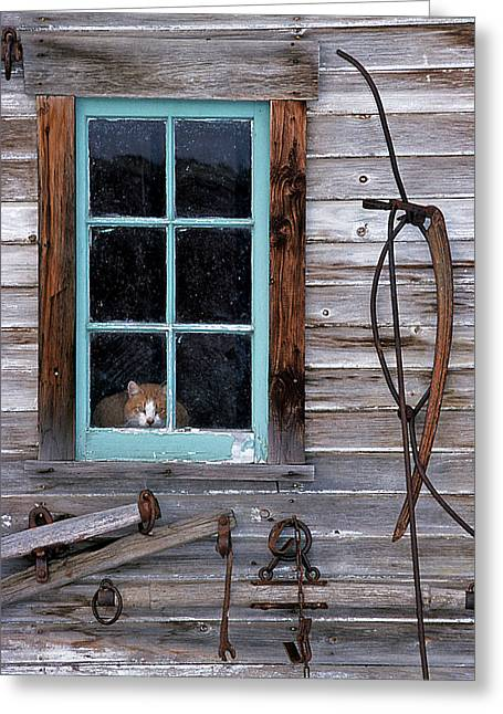 Barn Wood Greeting Cards - Farmhand Greeting Card by Latah Trail Foundation