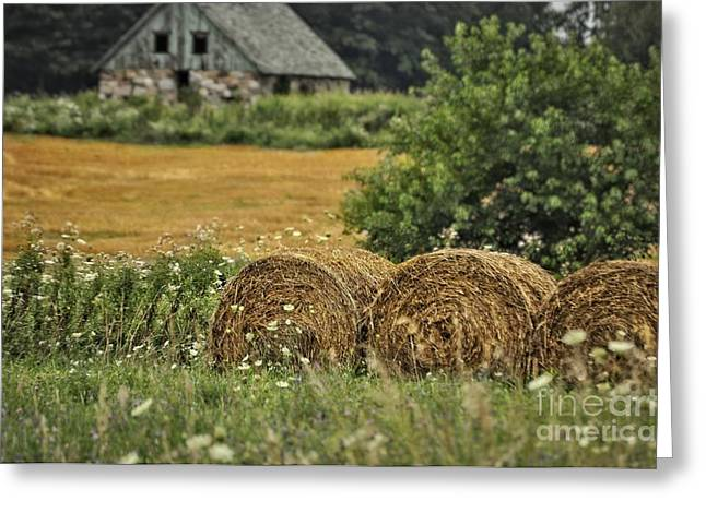 Michigan Farmhouse Greeting Cards - Farmhouse and Haystacks Greeting Card by Chris Fleming