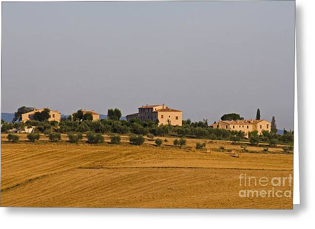 Hay Bales Greeting Cards - Farmhouses And Fields, Tuscany, Italy Greeting Card by Tim Holt