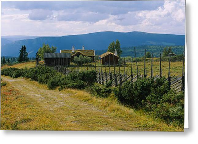 Rural Road Greeting Cards - Farmhouses In A Field, Gudbrandsdalen Greeting Card by Panoramic Images