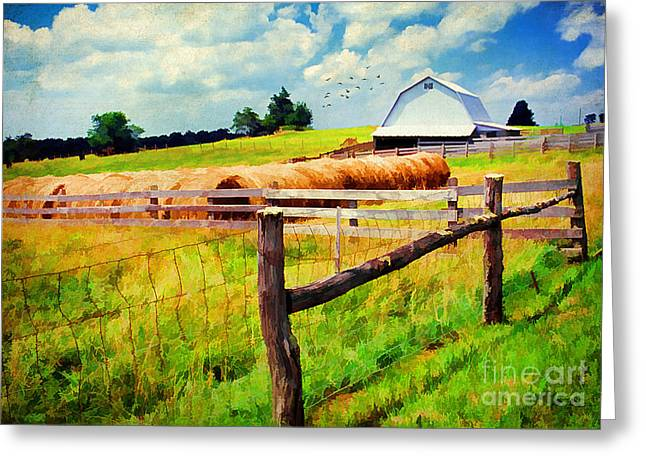 Golden Summer Grass Greeting Cards - Farming Greeting Card by Darren Fisher