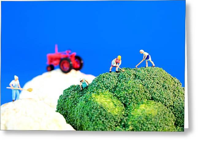 Farming on broccoli and cauliflower II Greeting Card by Paul Ge