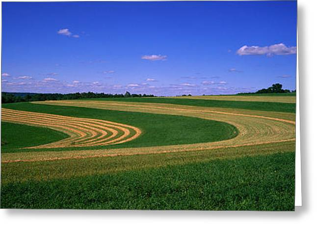 Rotation Photographs Greeting Cards - Farmland Il Usa Greeting Card by Panoramic Images