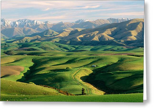 Snow Capped Greeting Cards - Farmland S Canterbury New Zealand Greeting Card by Panoramic Images