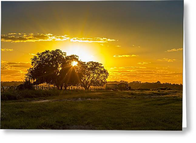 Farm Horse Greeting Cards - Farmland Sunset Greeting Card by Marvin Spates