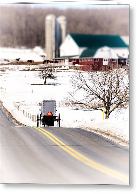 Horse And Buggy Greeting Cards - Farmland Greeting Card by Vicki Jauron