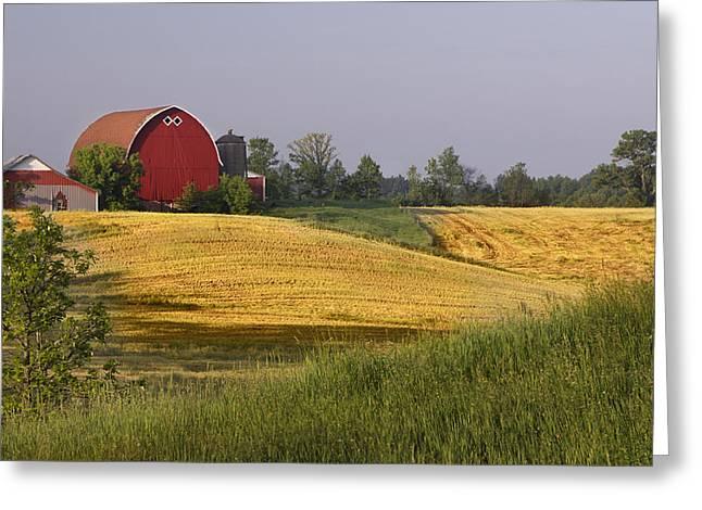 Barbara Smith Greeting Cards - Farmlands 1 Greeting Card by Barbara Smith