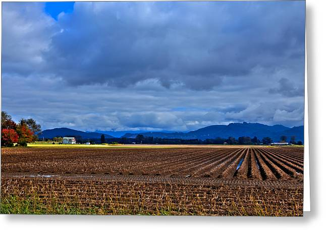 Puddle Greeting Cards - Farms of Mount Vernon Washington Greeting Card by David Patterson