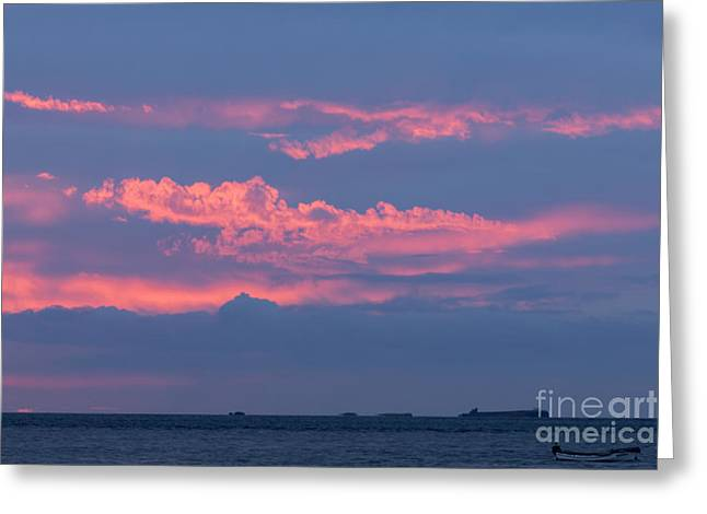 Farne Islands Greeting Cards - Farne Islands Sunrise Greeting Card by John Potter