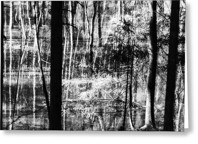 Repulse Greeting Cards - Fascinating reflection Greeting Card by Yevgeni Kacnelson