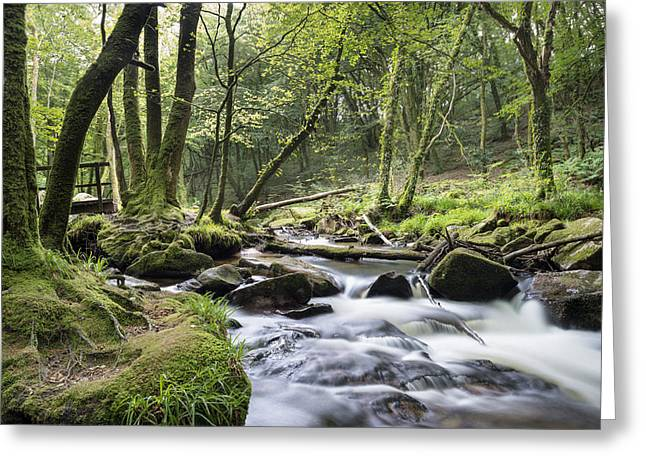 Fast Flowing River Greeting Card by Helen Hotson