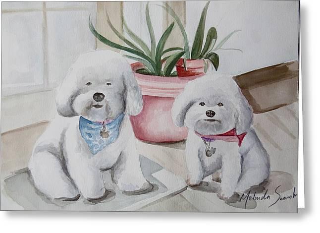 Toy Maltese Paintings Greeting Cards - Fat Bichons Greeting Card by Melinda Saminski