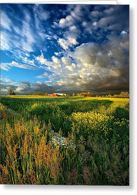 Geographic Greeting Cards - Fathers Day Greeting Card by Phil Koch
