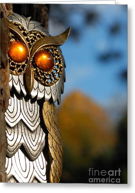 Jewelry Greeting Cards - Faux Owl with Golden Eyes Greeting Card by Amy Cicconi
