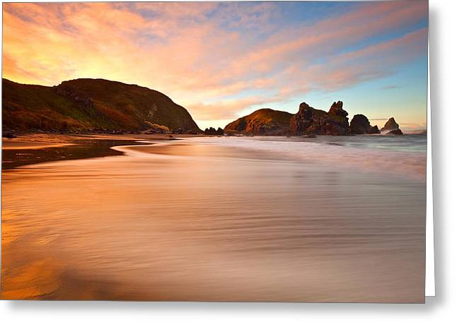 Pacific Northwest Greeting Cards - Favorite Beach Greeting Card by Darren  White