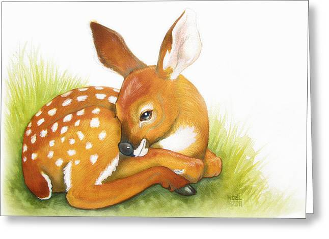 Hunters Moon Greeting Cards - Fawn Greeting Card by Catherine Noel