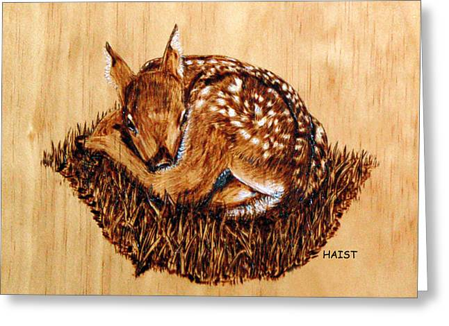 Wilderness Pyrography Greeting Cards - Fawn Greeting Card by Ron Haist
