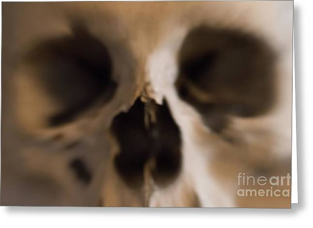 Trembling Greeting Cards - Fear And Trembling - Skull Greeting Card by Michal Boubin