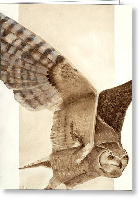 Unique Owl Greeting Cards - Fearless Flyer Greeting Card by Joyce Blank