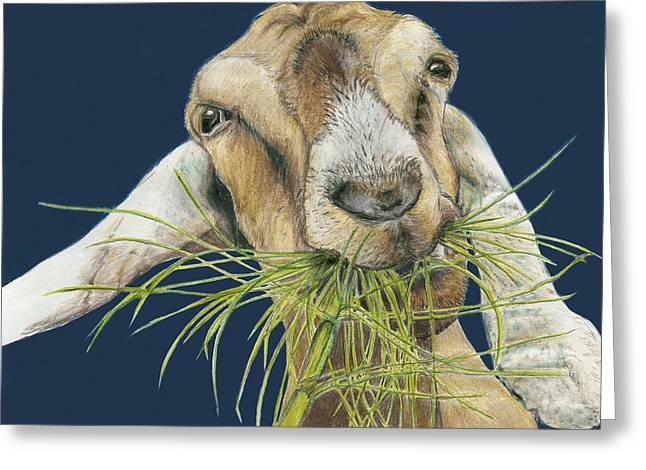 Goat Drawings Greeting Cards - Feast Greeting Card by Tracy Anderson