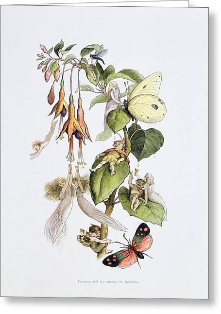 Elf Greeting Cards - Feasting And Fun Among The Fuschias Greeting Card by Richard Doyle