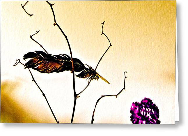 Feather And Carnation Greeting Card by Bob Orsillo