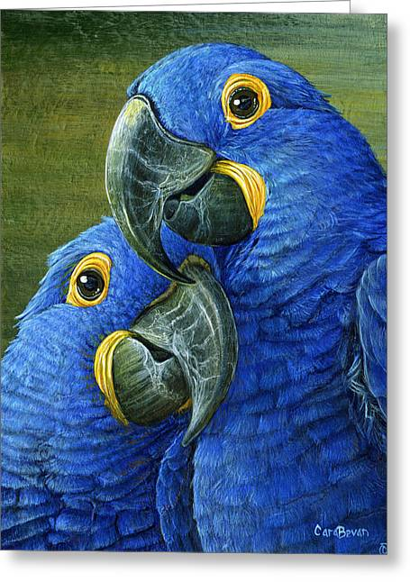 Blue Macaws Greeting Cards - Feathered Friend Greeting Card by Cara Bevan
