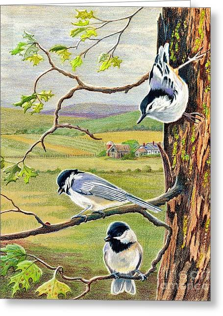 Oak Leaf Drawings Greeting Cards - Feathered Friends Greeting Card by Marilyn Smith