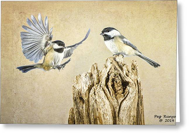 Pairs Greeting Cards - Feathered Friends Greeting Card by Peg Runyan