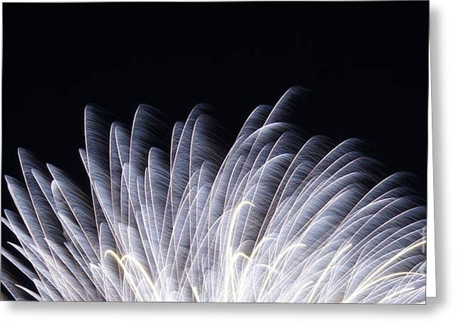 Reflections Of Infinity Llc Greeting Cards - Feathers of Fire Fireworks Greeting Card by Robert E Alter Reflections of Infinity