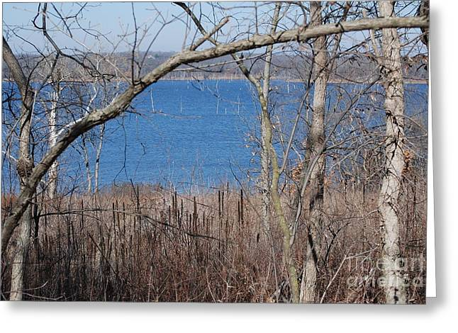 February At Hillsdale Greeting Card by Mark McReynolds