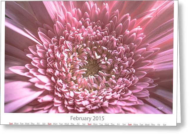 Monthly Calendars Greeting Cards - February Calendar Sheet Greeting Card by Alejandro Reyna