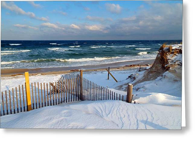 East Dennis Ma Greeting Cards - February Delight Greeting Card by Dianne Cowen