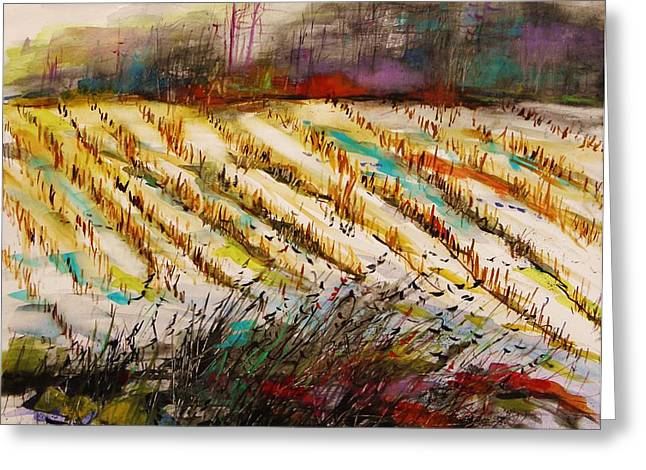 Cornfield Drawings Greeting Cards - February Mist Greeting Card by John  Williams