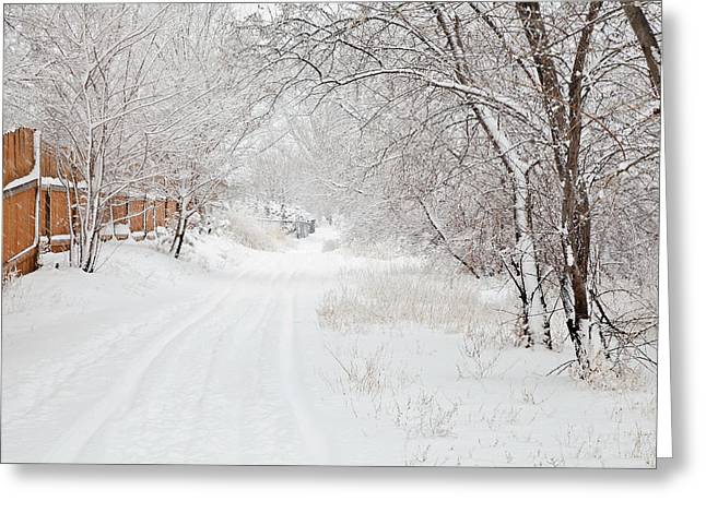 February Snow Greeting Card by Theresa Tahara