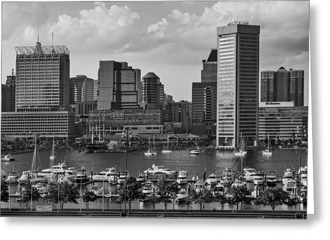 Federal Hill View To The Baltimore Skyline Bw Greeting Card by Susan Candelario