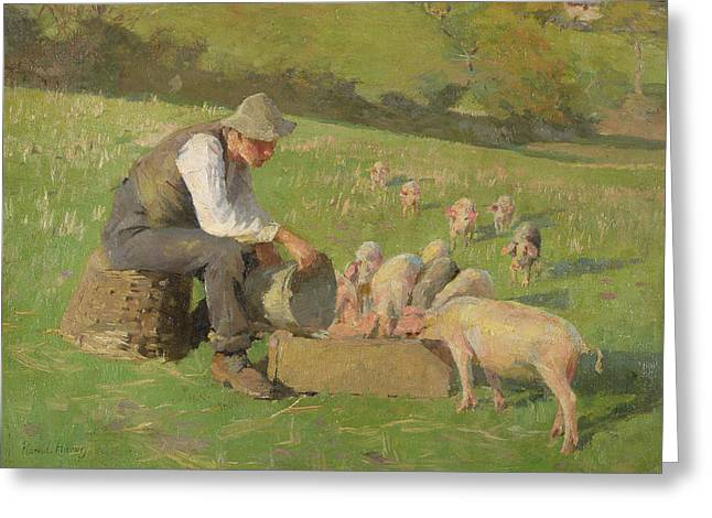 Farm Bucket Greeting Cards - Feeding Time Oil On Canvas Greeting Card by Harold Harvey