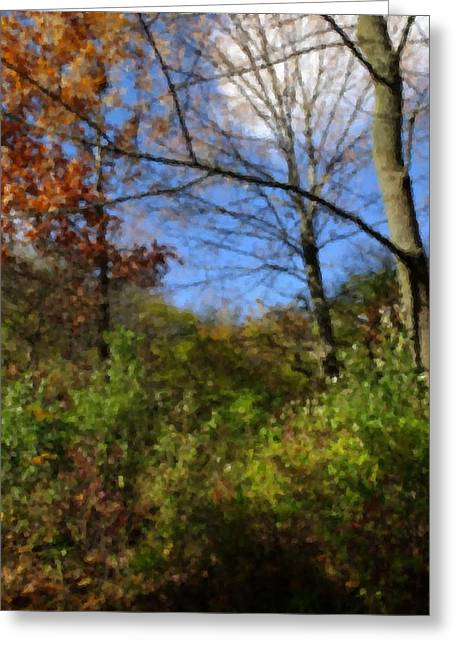 Indiana Autumn Greeting Cards - Feeling Autumn Greeting Card by Scott Kingery