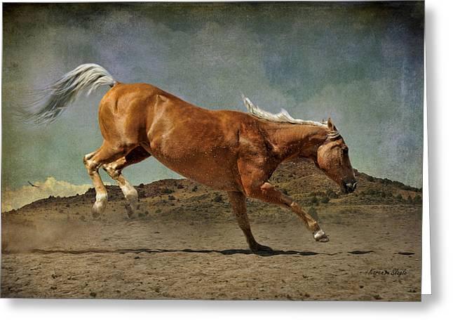 Quarter Horses Photographs Greeting Cards - Feeling Frisky Greeting Card by Karen Slagle
