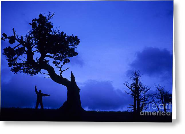 Dance Of Joy Greeting Cards - Feeling The Blues Greeting Card by Bob Christopher