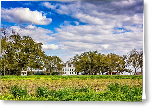 Slaves Photographs Greeting Cards - Felicity Plantation 2 Greeting Card by Steve Harrington