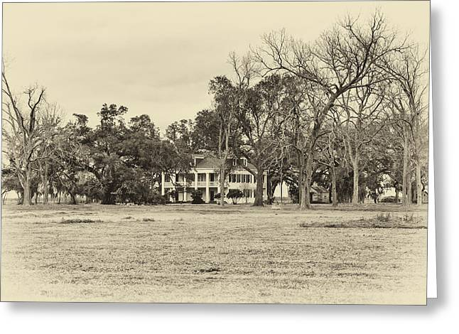 Slaves Photographs Greeting Cards - Felicity Plantation sepia Greeting Card by Steve Harrington