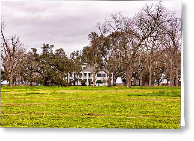 Slaves Photographs Greeting Cards - Felicity Plantation Greeting Card by Steve Harrington